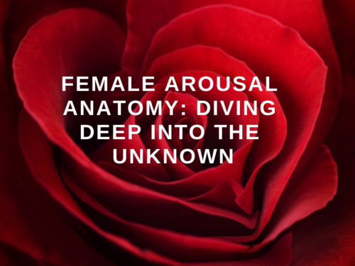 female arousal anatomy