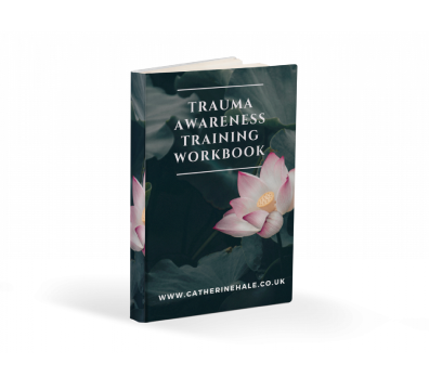 Trauma awareness Training workbook